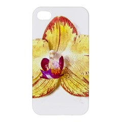 Yellow Phalaenopsis Flower, Floral Aquarel Watercolor Painting Art Apple Iphone 4/4s Premium Hardshell Case by picsaspassion