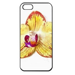 Yellow Phalaenopsis Flower, Floral Aquarel Watercolor Painting Art Apple Iphone 5 Seamless Case (black) by picsaspassion