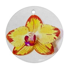 Phalaenopsis Yellow Flower, Floral Oil Painting Art Ornament (round) by picsaspassion