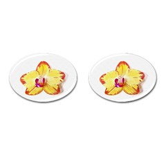 Phalaenopsis Yellow Flower, Floral Oil Painting Art Cufflinks (oval) by picsaspassion