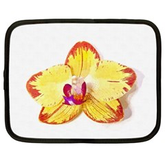 Phalaenopsis Yellow Flower, Floral Oil Painting Art Netbook Case (xl)  by picsaspassion