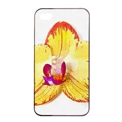 Phalaenopsis Yellow Flower, Floral Oil Painting Art Apple Iphone 4/4s Seamless Case (black) by picsaspassion