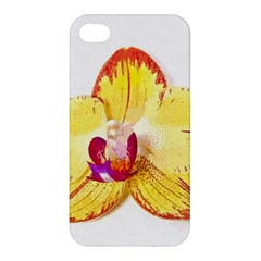 Phalaenopsis Yellow Flower, Floral Oil Painting Art Apple Iphone 4/4s Premium Hardshell Case by picsaspassion