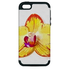 Phalaenopsis Yellow Flower, Floral Oil Painting Art Apple Iphone 5 Hardshell Case (pc+silicone) by picsaspassion