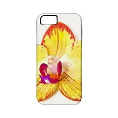 Phalaenopsis Yellow Flower, Floral Oil Painting Art Apple Iphone 5 Classic Hardshell Case (pc+silicone) by picsaspassion