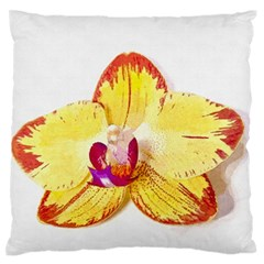 Phalaenopsis Yellow Flower, Floral Oil Painting Art Large Flano Cushion Case (one Side) by picsaspassion