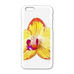 Phalaenopsis Yellow Flower, Floral Oil Painting Art Apple Iphone 6/6s White Enamel Case by picsaspassion