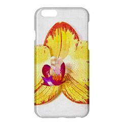Phalaenopsis Yellow Flower, Floral Oil Painting Art Apple Iphone 6 Plus/6s Plus Hardshell Case by picsaspassion