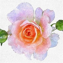 Pink Rose Flower, Floral Oil Painting Art Magic Photo Cubes by picsaspassion