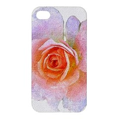 Pink Rose Flower, Floral Oil Painting Art Apple Iphone 4/4s Premium Hardshell Case by picsaspassion
