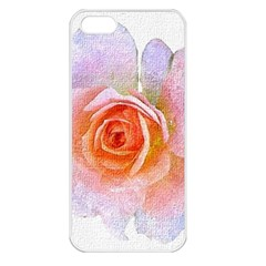 Pink Rose Flower, Floral Oil Painting Art Apple Iphone 5 Seamless Case (white) by picsaspassion