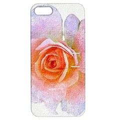 Pink Rose Flower, Floral Oil Painting Art Apple Iphone 5 Hardshell Case With Stand by picsaspassion