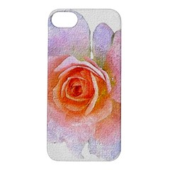 Pink Rose Flower, Floral Oil Painting Art Apple Iphone 5s/ Se Hardshell Case by picsaspassion