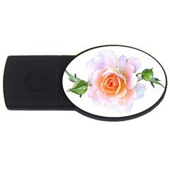 Pink Rose Flower, Floral Watercolor Aquarel Painting Art Usb Flash Drive Oval (2 Gb) by picsaspassion