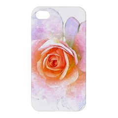 Pink Rose Flower, Floral Watercolor Aquarel Painting Art Apple Iphone 4/4s Hardshell Case by picsaspassion
