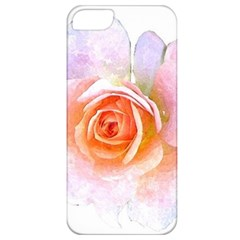 Pink Rose Flower, Floral Watercolor Aquarel Painting Art Apple Iphone 5 Classic Hardshell Case by picsaspassion