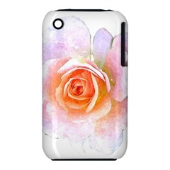 Pink Rose Flower, Floral Watercolor Aquarel Painting Art Iphone 3s/3gs by picsaspassion
