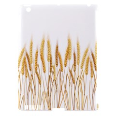 Wheat Plants Apple Ipad 3/4 Hardshell Case (compatible With Smart Cover) by Mariart