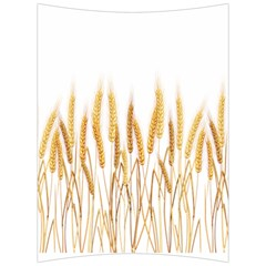Wheat Plants Back Support Cushion by Mariart