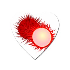 Rambutan Fruit Red Sweet Heart Magnet by Mariart