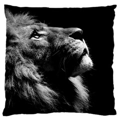 Male Lion Face Standard Flano Cushion Case (one Side)