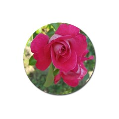 Romantic Red Rose Photography Magnet 3  (round) by yoursparklingshop