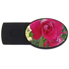 Romantic Red Rose Photography Usb Flash Drive Oval (2 Gb) by yoursparklingshop