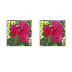 Romantic Red Rose Photography Cufflinks (square) by yoursparklingshop