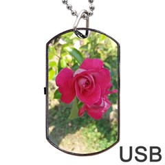 Romantic Red Rose Photography Dog Tag Usb Flash (one Side) by yoursparklingshop