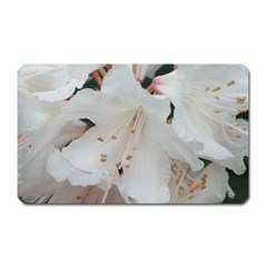 Floral Design White Flowers Photography Magnet (rectangular) by yoursparklingshop