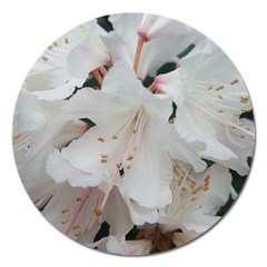 Floral Design White Flowers Photography Magnet 5  (round) by yoursparklingshop