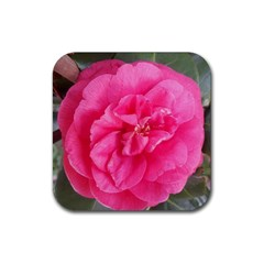 Pink Flower Japanese Tea Rose Floral Design Rubber Square Coaster (4 Pack)  by yoursparklingshop