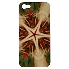 Spaghetti Italian Pasta Kaleidoscope Funny Food Star Design Apple Iphone 5 Hardshell Case by yoursparklingshop