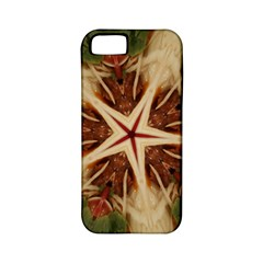 Spaghetti Italian Pasta Kaleidoscope Funny Food Star Design Apple Iphone 5 Classic Hardshell Case (pc+silicone) by yoursparklingshop