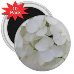 Hydrangea Flowers Blossom White Floral Elegant Bridal Chic 3  Magnets (10 Pack)  by yoursparklingshop