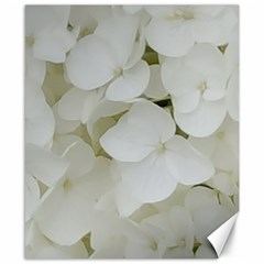 Hydrangea Flowers Blossom White Floral Elegant Bridal Chic Canvas 8  X 10  by yoursparklingshop
