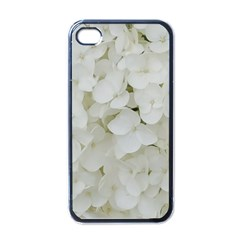 Hydrangea Flowers Blossom White Floral Elegant Bridal Chic Apple Iphone 4 Case (black) by yoursparklingshop