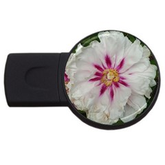 Floral Soft Pink Flower Photography Peony Rose Usb Flash Drive Round (2 Gb) by yoursparklingshop