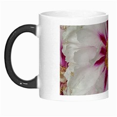 Floral Soft Pink Flower Photography Peony Rose Morph Mugs by yoursparklingshop