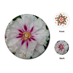Floral Soft Pink Flower Photography Peony Rose Playing Cards (round)