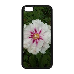 Floral Soft Pink Flower Photography Peony Rose Apple Iphone 5c Seamless Case (black) by yoursparklingshop