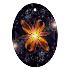 Beautiful Orange Star Lily Fractal Flower At Night Ornament (oval) by jayaprime