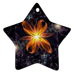 Beautiful Orange Star Lily Fractal Flower At Night Ornament (star) by jayaprime