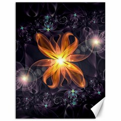 Beautiful Orange Star Lily Fractal Flower At Night Canvas 12  X 16   by jayaprime
