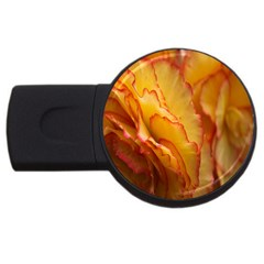 Flowers Leaves Leaf Floral Summer Usb Flash Drive Round (2 Gb) by Celenk