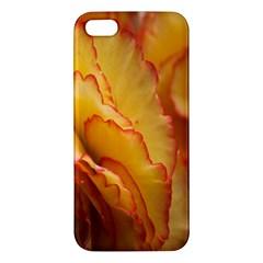 Flowers Leaves Leaf Floral Summer Iphone 5s/ Se Premium Hardshell Case by Celenk