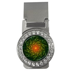 Beautiful Orange Green Desert Cactus Fractalspiral Money Clips (cz)  by jayaprime