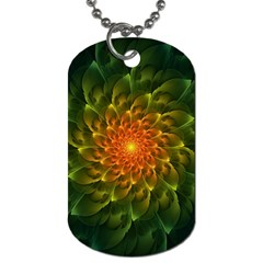Beautiful Orange Green Desert Cactus Fractalspiral Dog Tag (one Side) by beautifulfractals