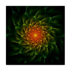Beautiful Orange Green Desert Cactus Fractalspiral Face Towel by jayaprime