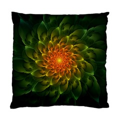 Beautiful Orange Green Desert Cactus Fractalspiral Standard Cushion Case (one Side) by jayaprime